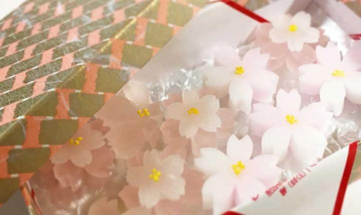 塩野の春の和菓子をご紹介!可憐で美しい桜の干菓子