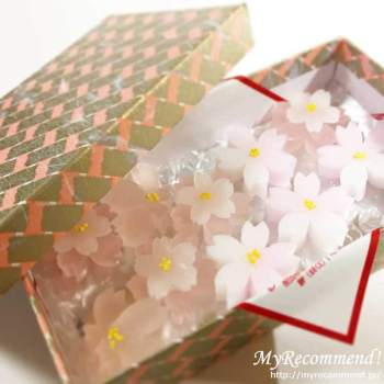 塩野 桜干菓子 箱