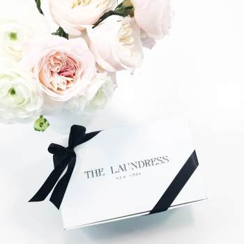 THE LAUNDRESS (2)