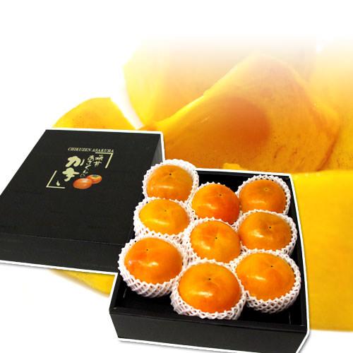 あさくら 福岡産 極上の甘柿