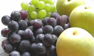 秋の果物おすすめ