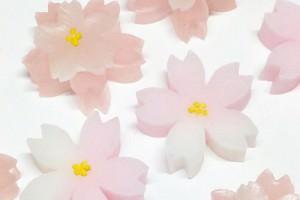 日本の心を贈る和菓子