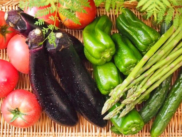夏野菜 (2)