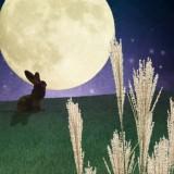 お月見6 (1)