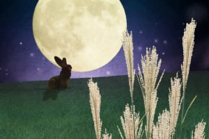 2020年のお月見は?十五夜や中秋の名月、お供え物について解説
