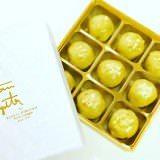 Satomi_Fujita_01