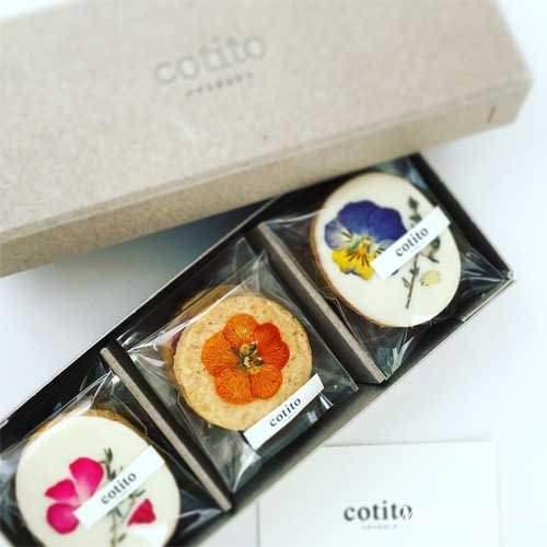 cotito_01
