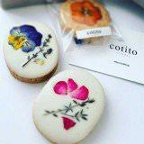 cotito_02