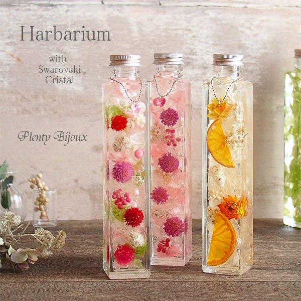 ハーバリウム Herbarium