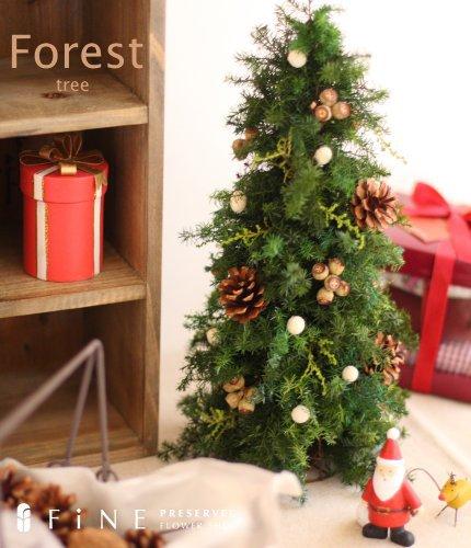 クリスマスツリー,フォレスト・ツリー
