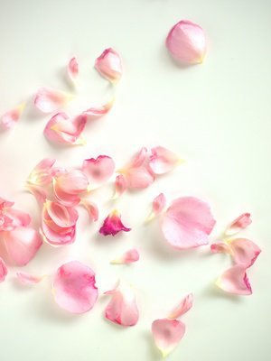 バラの香りのリップ美容液