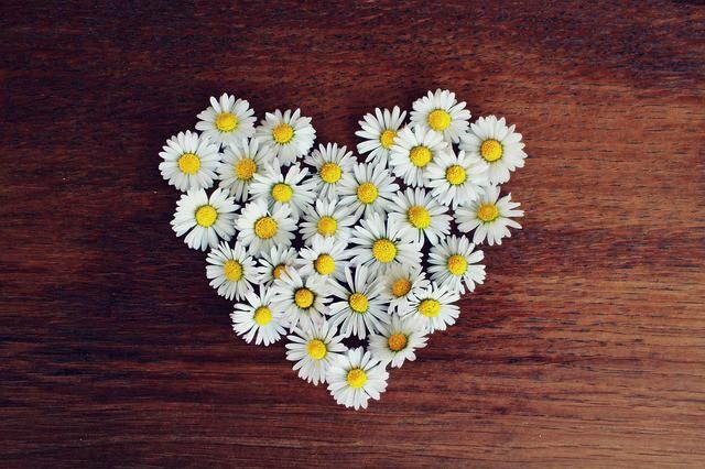 母の日のお花ギフト