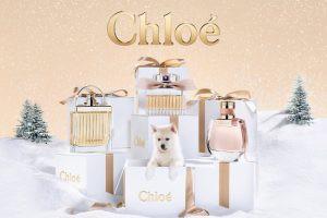 クリスマスの香水2019!ご褒美や彼女へのプレゼントにも