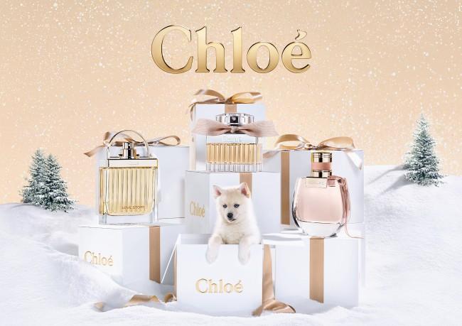 Chloeのノマド ホリデーセット