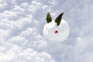 冬にぴったりの和菓子「日本の冬を菓子で表現」新春や早春も