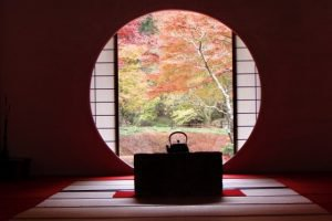 秋の手土産におすすめ【日本の心を贈る】秋の和菓子特集!