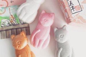 神楽坂で人気のお菓子&和菓子!駅近くで買いやすいお土産に