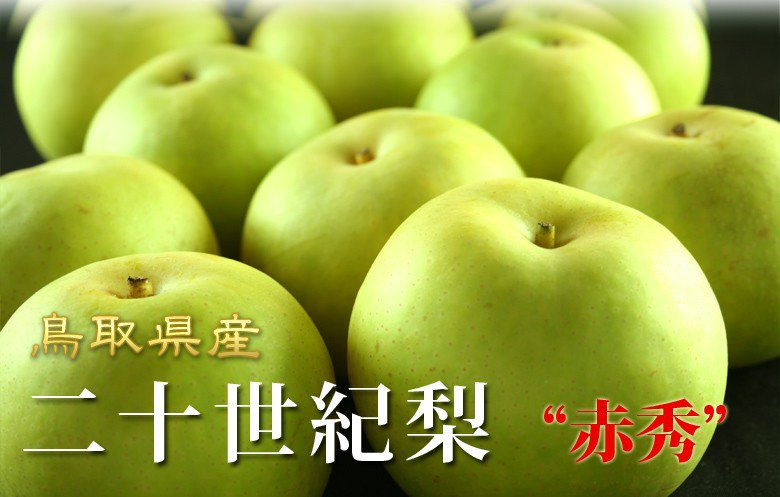鳥取県産の二十世紀梨