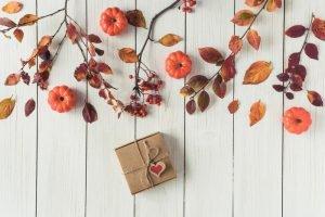 秋のスイーツ&お菓子特集