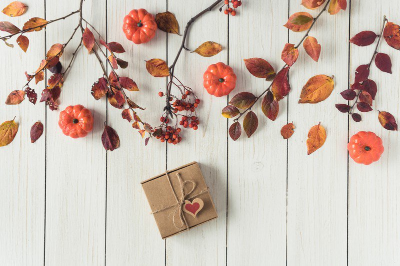 秋の手土産やギフトに