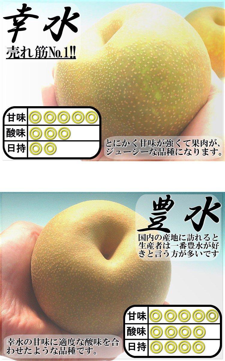 千葉梨の梨