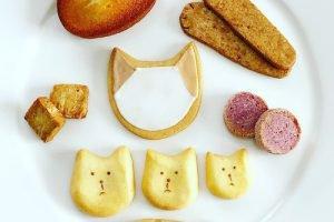 Calico(キャリコ)の猫クッキーが可愛い!プチギフトにも!