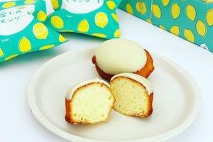 包装紙も可愛い!Koti(コティ)のレモンケーキをお取り寄せ